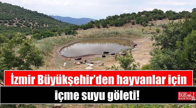 Büyükşehir'den hayvanlar için içme suyu göleti