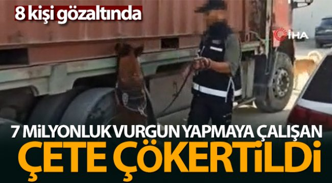 7 milyon liralık vurguna hazırlanan kaçakçılık şebekesi çökertildi